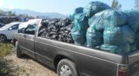 La Procuraduría Federal de Protección al Ambiente (PROFEPA) y la División de Seguridad Regional de la Policía Federal en Nayarit, dieron a conocer que se logró la detección y aseguramiento […]