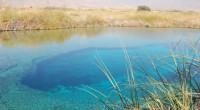 México, D.F.- La Comisión Nacional de Áreas Naturales Protegidas (Conanp) dio una plática a jóvenes de la Telesecundaria de Bahía de los Ángeles, Baja California con motivo del Día Mundial […]