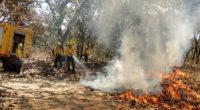La Comisión Nacional Forestal (CONAFOR), en su reporte emitido semanalmente, señala que del 01 de enero al 4 de abril de 2019 se han registrado 2,097 incendios forestales en […]