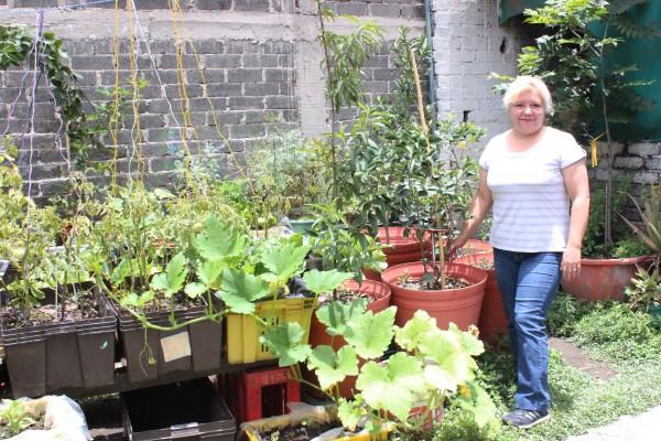 """ALFREDO IBÁÑEZ Cd. Nezahualcóyotl, Méx.-Con el fin de promover la seguridad alimentaria mediante la producción de alimentos sanos, el gobierno municipal impulsó en agosto de 2013 el """"Programa Agricultura Urbana, […]"""