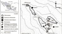 La provisión y regulación de flujos de agua en cuencas constituye el servicio ecosistémico más importante de los bosques de niebla, pero la alteración que sufre por el cambio en […]