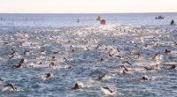 Se dio a conocer que en el puerto de Los Cabos, Baja California sur, se desarrollo por cuarta ocasión el evento internacional triatlón Ironman en su edición 2016; organizado por […]