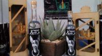 Con ventas considerables de mezcales oaxaqueños y michoacanos, la plataforma www.mimezcalito.com logró la aceptación del mercado capitalino por este emprendimiento social que ayuda a los pequeños productores a mejorar su […]