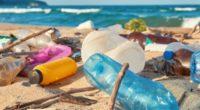 La organización ECOCE, A.C. enfocada al reciclado de plástico PET lanzó un llamado para considerar los beneficios ambientales, económicos, sociales y culturales de la adecuada gestión de los residuos de […]