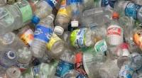 En el marco del Día Internacional del Reciclaje, -17 de mayo-, se dio a conocer que el Sistema Coca-Cola en México en materia de reciclado de botellas de PET se […]