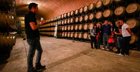 """La Finca Sala Vivé de Freixenet, en el estado de Querétaro, logró rebasar expectativas albergando a más de 5 mil visitantes este fin de semana, para su Festival """"Vino y […]"""
