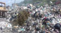 La Procuraduría Federal de Protección al Ambiente (PROFEPA) constató que no existen residuos biológicos infecciosos o peligrosos vertidos o mezclados con el resto de los residuos sólidos urbanos, en el […]