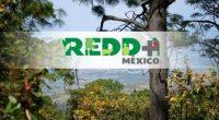 POR Ana Herrera El cambio climático es un problema mundial que se ha convertido en una oportunidad para fortalecer áreas vulnerables: el estado de los bosques, los modelos de producción, […]