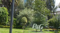 En la planta de la empresa P&G ubicada en Vallejo, en el norte del DF, se tiene la mayor producción de detergentes de Latinoamérica de esta marca, que ahora se […]