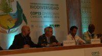 Rafael Pacchiano, Secretario de Medio Ambiente comentó que la 13 Conferencia de las Partes del Convenio sobre la Diversidad Biológica, (COP13), indicó que se han establecido grandes avances antes no […]