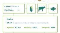 El estado de Zacatecas se distingue por ocupar primeros lugares en producción nacional de frijol, durazno, guayaba, cebolla, chile verde, avena, lechuga y uva fruta e industrial, además de posicionarse […]