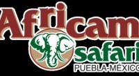 El parque temático Africam Safari, dio a conocer su campaña de reciclado de árboles navideños en donde se ha puesto la meta de recolectar 6,000 unidades. Que al ser entregados […]