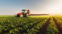 En el debate sobre el cambio climático, cabe preguntarse por el papel que juega la agricultura en las emisiones de GEI y preguntar si es sostenible el incremento de la […]