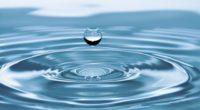 El Consejo Consultivo del Agua A.C. (CCA), haciendo uso de las facultades que le otorga la Ley de Aguas Nacionales, presentó a la doctora Blanca Jiménez Cisneros, Directora General de […]