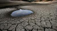 La Comisión Nacional del Agua (Conagua) incrementó la extracción de la presa La Boquilla, hasta alcanzar 110 metros cúbicos por segundo (m3/s). Ello, con dos objetivos: cumplir el compromiso de […]