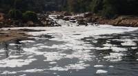 Las cuotas legales de garantía para el uso y aprovechamiento del agua es responsabilidad de la Comisión Nacional del Agua (Conagua) que tasa en 19 pesos el metro cubico; mientras […]