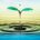 Limpiar el agua residual y obtener bioenergía al mismo tiempo es posible con la utilización de celdas de combustible microbianas, las cuales utilizan microorganismos para convertir la materia orgánica del […]