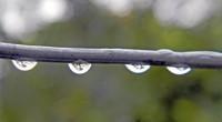 Es la captación de la precipitación pluvial para usarse en la vida diaria. Aunque la idea no es nueva, es una práctica cada vez más popular en climas áridos? En […]