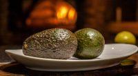 El aguacate mexicano, que se caracteriza por su sabor, propiedades alimenticias y la gran variedad de platillos en que se puede preparar; desde una tortilla con una pizca de sal, […]