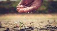 El agua residual del mundo —el 80% de la cual se vierte al medioambiente sin haber recibido un tratamiento adecuado— es un recurso valioso del que pueden recuperarse varios elementos, […]
