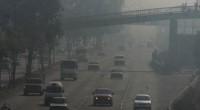 El Centro Mexicano de Derecho Ambiental, A.C. (CEMDA) y la Comisión Nacional de Derechos Humanos (CNDH) discutieron la contaminación atmosférica está afectando el derecho de los mexicanos a un […]
