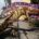 Alebrijes monumentales representando a especies mexicanas en riesgo como son los ajolotes se puede admirar en la entrada del Zoológico de Chapultepec, que estará a la vista de sus visitantes […]