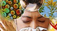 En México se padece de un alza en alergias a diversos factores del ambiente, que se agravan por la presencia del cambio climático, así como de la nula sinergia de […]