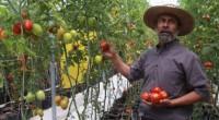 Según la última edición del informePerspectivas Agrícolaspara los próximos 10 años publicado por la OCDE y la FAO, se espera que los precios mundiales de los productos básicos alimentarios se […]
