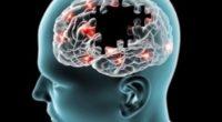 La Comisión Europea (UE), dio a conocer que la marca Roche tiene la autorización para comercializar y aplicar el medicamento Ocrelizumab en los pacientes con Esclerosis Múltiple Recurrente (EMR) activa, […]