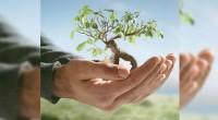 Isabel Studer, directora del Instituto Global para la Sostenibilidad (IGS), comentó que la empresa en la sostenibilidad tiene una gran diversidad, ya que hay un universo enorme de micro y […]
