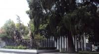 México celebra, a partir de hoy, la conmemoración de los 494 años de la noche victoriosa en la explanada del conocido hoy como Arbol de la Noche Victoriosa, que antes […]
