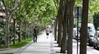 Con el propósito de continuar con el plan de revegetación en la capital para crear más espacios verdes que ayuden a disminuir los efectos del cambio climático, reducir contaminantes y […]