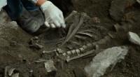 La detección de entierros humanos correspondientes a dos adultos, que datan de los años 1325-1500 d.C., asociados a fragmentos de cerámica y lítica tallada, tuvo lugar en la unidad habitacional […]