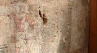 La Tumba Tebana 39 del profeta Puimra, segundo sacerdote de Amón, ubicada en la zona de Assasif de la ciudad de Luxor, en la República Árabe de Egipto, ha recobrado […]