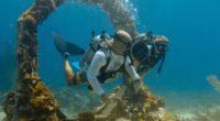 Bucear es una de las actividades más populares en el estado de Quintana Roo, en el sureste mexicano, gracias a la claridad de sus aguas y biodiversidad de especies marinas; […]