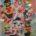 En la edición de febrero de la revista Playboy se hace un homenaje al arte con imágenes y obras de nueveartistas mexicanosy la intervención especial de la pintoraGilda Garza, de […]