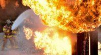Los incendios en México aumentaron alarmantemente a una tasa del 10 por ciento anual, uno de los más altos en los últimos años, ocasionando grandes pérdidas humanas y económicas, denunció […]