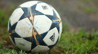 Adolfo Montiel Talonia El deporte popular en el mundo, es el futbol soccer. Es, además, el deporte comercial más productivo. Es una fábrica de ilusiones y de dinero. Millones de […]