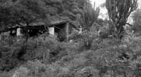 La llegada de la temporada de huracanes coloca a México, de nueva cuenta, ante estos fenómenos naturales que acaban golpeando a miles de habitantes pobres que pierden su patrimonio, situación […]
