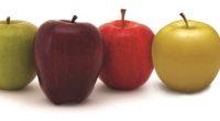 A nivel mundial existe una gran variedad de manzanas, por sus diferentes propiedades y características se engloban, comúnmente, en cuatro variedades con sus respectivos colores. Ya sean rojas, amarillas, verdes […]