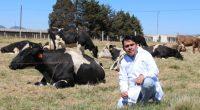 En México los consumidores estarían dispuestos a pagar un poco más –entre uno y diez por ciento– por la carne, si se garantizara que el proceso para su obtención procura […]