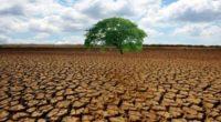 Los cinco candidatos a la Presidencia fueron exhortados hoy a entablar un diálogo urgente con líderes de organizaciones ambientalistas nacionales e internacionales basado en el documento 10 propuestas para proteger […]