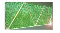 Crean emprendedores del Edomex, biopaneles solares que absorben CO2 y se adaptan a superficies 3D México en riesgo de perder la gran oportunidad de aprovechar su gran Sol Estudiantes universitarios […]