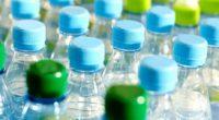 La Asociación Nacional de Industrias del Plástico, A.C. (ANIPAC) advierte sobre los riesgos de utilizar únicamente plásticos biodegradables para elaborar bolsas, desechables y empaques sustitutos. A partir de la entrada […]