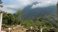 Luego de resaltar que Chiapas es crucial en el entorno forestal del país, Jorge Rescala Pérez, director general de la Comisión Nacional Forestal (Conafor), en gira de trabajo por esta […]