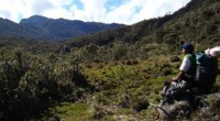Para fortalecer el desarrollo sustentable del país con una perspectiva integral y de género de los habitantes de las áreas forestales, la Comisión Nacional Forestal firmó acuerdos en estos rubros […]