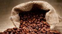Siendo México uno de los principales países productores de café y cuyo consumo se incrementa un 2% anualmente, son el marco de la presentación de la marca Biocafé, catalogada como […]
