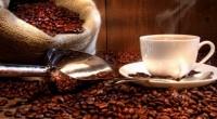 Se dio a conocer que los precios en la Bolsa del Café de Nueva York han descendido en un 32% en los últimos 4 meses, han pasado de niveles de […]