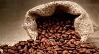 El café es uno de los productos más emblemáticos del estado de Veracruz, tanto por su calidad como por las características organolépticas que lo hacen único. Por esta razón, la […]
