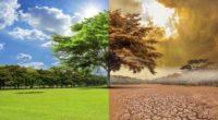 Con el objetivo de integrar la información más reciente de nuestro país en materia de acción climática, este jueves 17 de diciembre el Instituto Nacional de Ecología y Cambio Climático […]